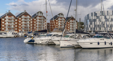 Coastal Tours & Seal Trips in Ipswich