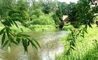 Wensum View Cottage