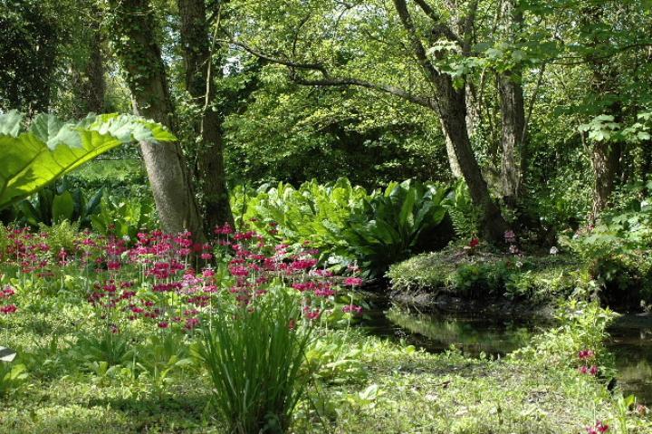 Fairhaven Garden Green Festival