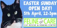 Easter Sunday Open Day