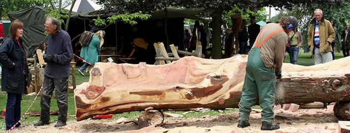 Weird and Wonderful Wood
