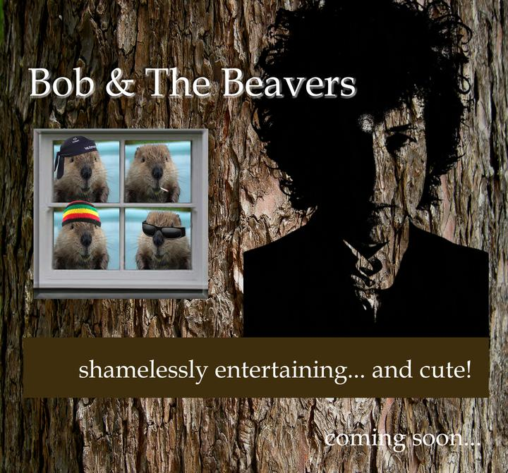 Bob and The Beavers - The Lion Inn, Thurne - 8.30pm