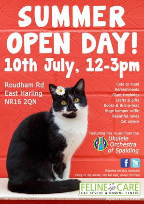 Feline Care Summer Open Day
