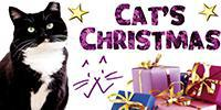 Cat's Christmas at Feline Care