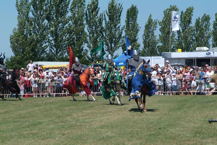Essex Robin Hood Game & Country Show