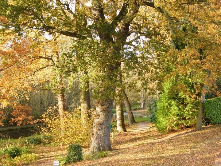 Enjoy Fairhaven's Majestic Autumn Colours
