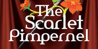 Outdoor Theatre - The Scarlet Pimpernel