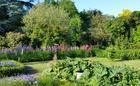 Gardens  at Hemstead Hall Farmhouse B&B