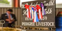 The Suffolk Show 2019